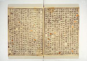 朝鮮王朝の公的な歴史書である「朝鮮王朝実録」にチャングムの記述が散見している