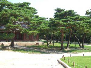 貞純王后は長い間、昌慶宮で過ごした。写真は緑が多い現在の昌慶宮
